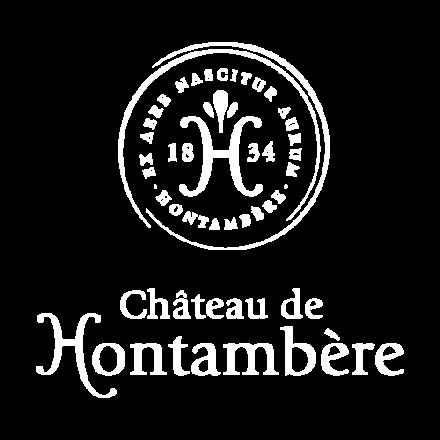 CHATEAU-DE-HONTAMBERE